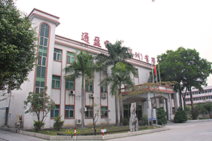 Tong Ying Electronics (Shenzhen) Co., Ltd.